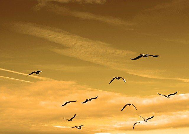 Las 3 Tácticas más eficaces para liderar con el ejemplo